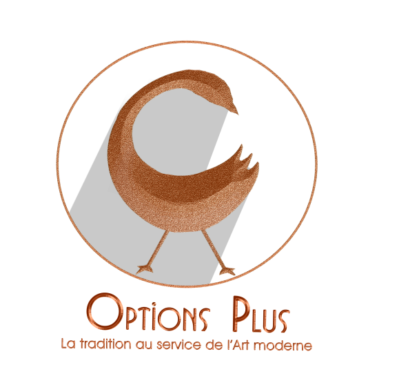 Exposition Vente Artisanat Africain #3 - Options Plus