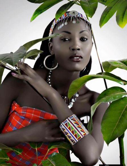 Safari Shop Kenya